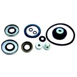 R.o. 396351 Seal kit