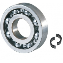 Crankshaft Bearings Mariner