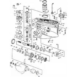 V4 & V6 (2002-2006) Evinrude
