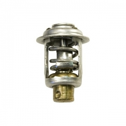 Thermostat Evinrude